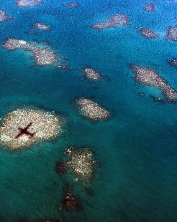 2016年3月,一架飞机的影子落在大堡礁北部白化的珊瑚上。