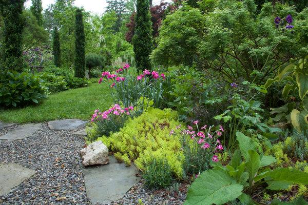 在肯·德鲁士位于新泽西州的花园里,精心摆放在休息区旁的常夏石竹和康乃馨,它们都属于石竹属,散发出类似丁香的香味。