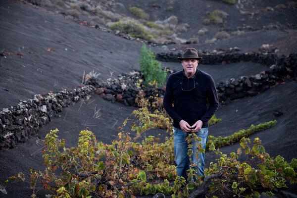 托雷斯在Uga村附近的葡萄园里。