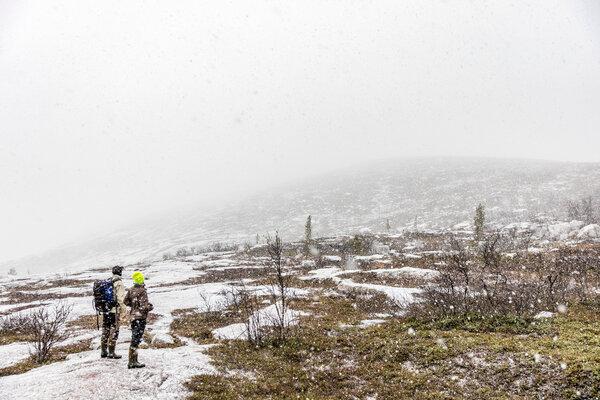 """在约克莫克镇以西,这个季节的第一场暴风雪正在逼近,这里是被称为""""fjäll""""的瑞典山脉的起点。"""