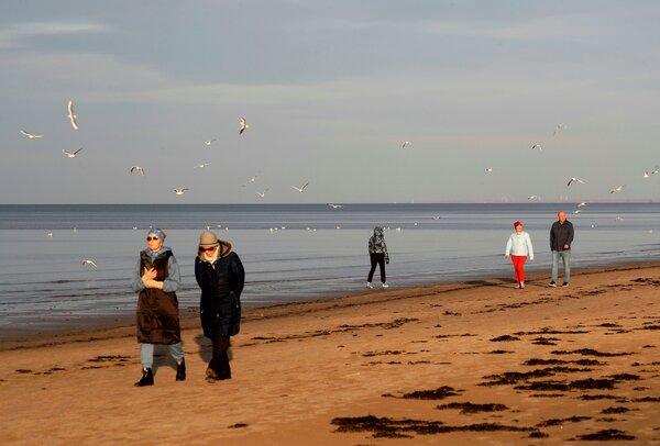 拉脱维亚波罗的海海滨城市尤尔马拉的金沙海滩,现在这里正吸引着来自该地区以外的游客和买家。